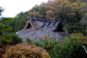 autumnhome